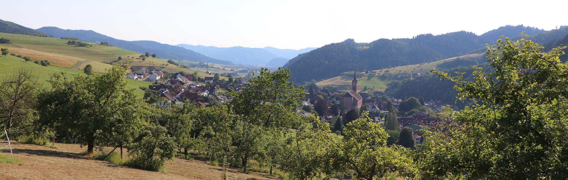 aussicht-oberharmersbach-wohnpark-mietwohnungen-schwarzwald